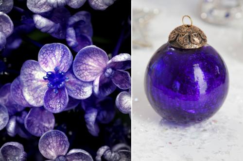 сине-фиолетовый цвет