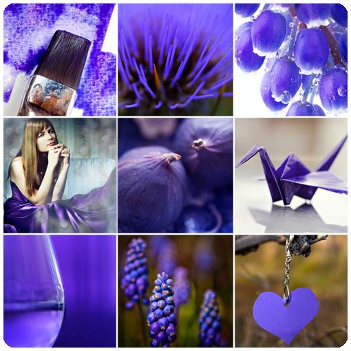 сине-фиолетовый