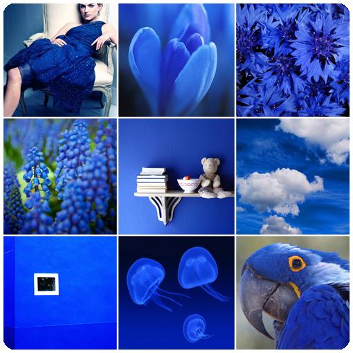 Синий цвет индиго фото