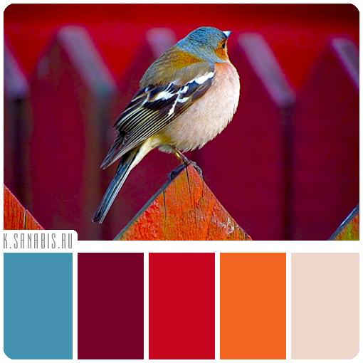 королевская цветовая палитра