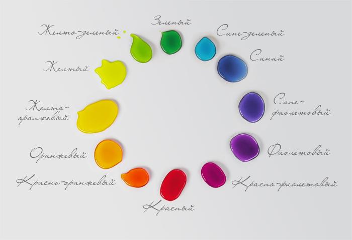 цветовой круг из 12-ти сегментов